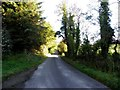 C3225 : Road at Strahack, Inch Island by Kenneth  Allen