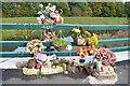 SK9175 : Memorial on Broxholme Lane bridge over the Till by Julian P Guffogg