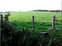 C3225 : Farragans Townland by Kenneth  Allen