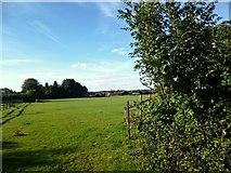 SU7995 : Towards Studley Green Farm by Des Blenkinsopp