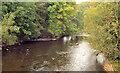 J0949 : The River Bann at Laurencetown (2) by Albert Bridge