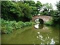 SU1661 : Pains Bridge [no 113] by Christine Johnstone