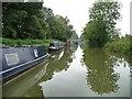 SU1561 : Narrowboats moored east of Pewsey Wharf by Christine Johnstone