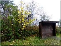 H5776 : Walker's shelter, Altdrumman by Kenneth  Allen