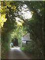 SX3460 : Lane at Tideford Cross by Derek Harper