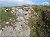 SH7783 : Limestone quarry by Jonathan Wilkins