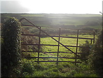 SW4538 : Zennor: view through a rusting gate by Chris Downer