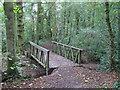 TL6705 : Bridge over Sandy Brook, Writtle Belt, Hylands Park by Roger Jones
