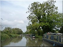 SU2763 : Moored narrowboats on south [towpath] bank by Christine Johnstone