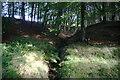 SJ9774 : Small clough in Long Clough by Bill Boaden