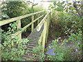 SJ7178 : Footbridge over Waterless Brook by Maggie Cox