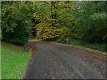 TQ0165 : Botley Mansion driveway by Alan Hunt