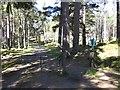 NO0689 : Road end, Linn of Dee by Richard Webb