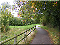 TM3763 : Footpath to Brook Farm Road by Adrian Cable