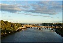 NT9953 : Royal Tweed Bridge by kim traynor