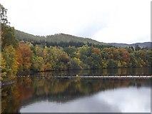NN9357 : Loch Faskally from Pitlochry Dam by Stephen Sweeney
