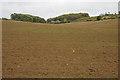 SP1915 : Arable land near Furzehill Leys by Philip Halling