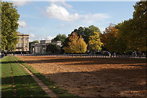 TQ2879 : On Rotten Row looking towards Hyde Park Corner by Doug Lee
