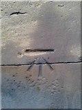 SE1431 : Ordnance Survey Cut Mark by Peter Wood