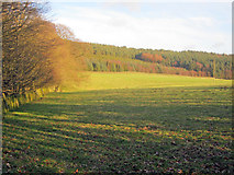 SK2769 : Meadow south of Swiss Cottage by Trevor Rickard