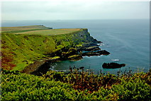 C9444 : Antrim Coast - East Side of Portnaboe Bay by Joseph Mischyshyn