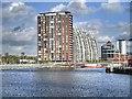 SJ8097 : Salford Quays, North Bay by David Dixon