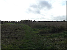 TM3864 : Looking towards Kelsale Mill by Adrian Cable