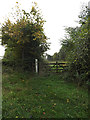 TM3865 : Footpath to Curlew Green by Adrian Cable