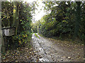 TM3865 : Footpath to Curlew Green by Geographer