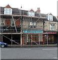 ST5777 : Stripy Dog under scaffolding, Westbury-on-Trym by Jaggery