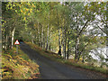 NN1291 : Road on north side of Loch Arkaig near to Muick by Trevor Littlewood