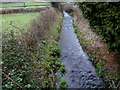 ST4289 : St Bride's Brook, St Brides Netherwent by Jaggery