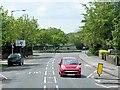 TR3664 : Nethercourt Hill by David Dixon