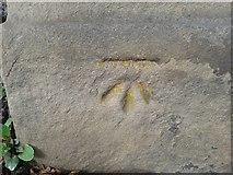 SE1437 : Ordnance Survey Cut Mark by Peter Wood