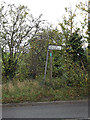 TM1343 : Footpath to the A1214 London Road by Adrian Cable