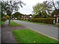 TL2213 : High Oaks Road, Welwyn Garden City [3] by Christine Johnstone