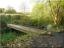 SE1537 : Footbridge over Bradford Beck by Humphrey Bolton