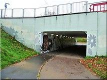 TL2512 : Subway under Black Fan Road, WGC by Christine Johnstone