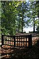 SU5567 : Church gate by Richard Croft