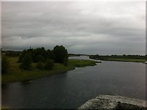 M9625 : River Shannon, south view from the bridge by Darrin Antrobus