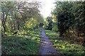 SJ4165 : Footpath to Queen's Park by Jeff Buck