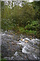 SX1191 : River Valency at Newmills by Christopher Hilton