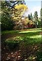 SP1833 : Batsford Arboretum (09) -  trees, Batsford, Glos by P L Chadwick