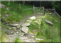 SN8356 : Bridleway into the forest by Nant Irfon, Powys by Roger  Kidd