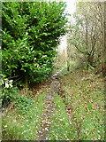 SE0023 : Hebden Royd FP115 near Marshaw Bank by Humphrey Bolton