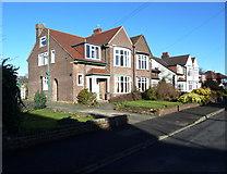 SJ7886 : Houses in Grange Avenue, Hale by Anthony O'Neil
