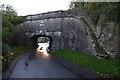 SD5187 : Sedgwick Aqueduct by Ian Taylor