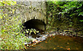 J4059 : Stream and bridge, Saintfield (2) by Albert Bridge