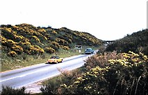 NZ6813 : Milestone and road sign by A171 approaching Freebrough by Stanley Howe
