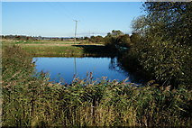 SE8437 : Market Weighton Canal near Sand Lane by Ian S
